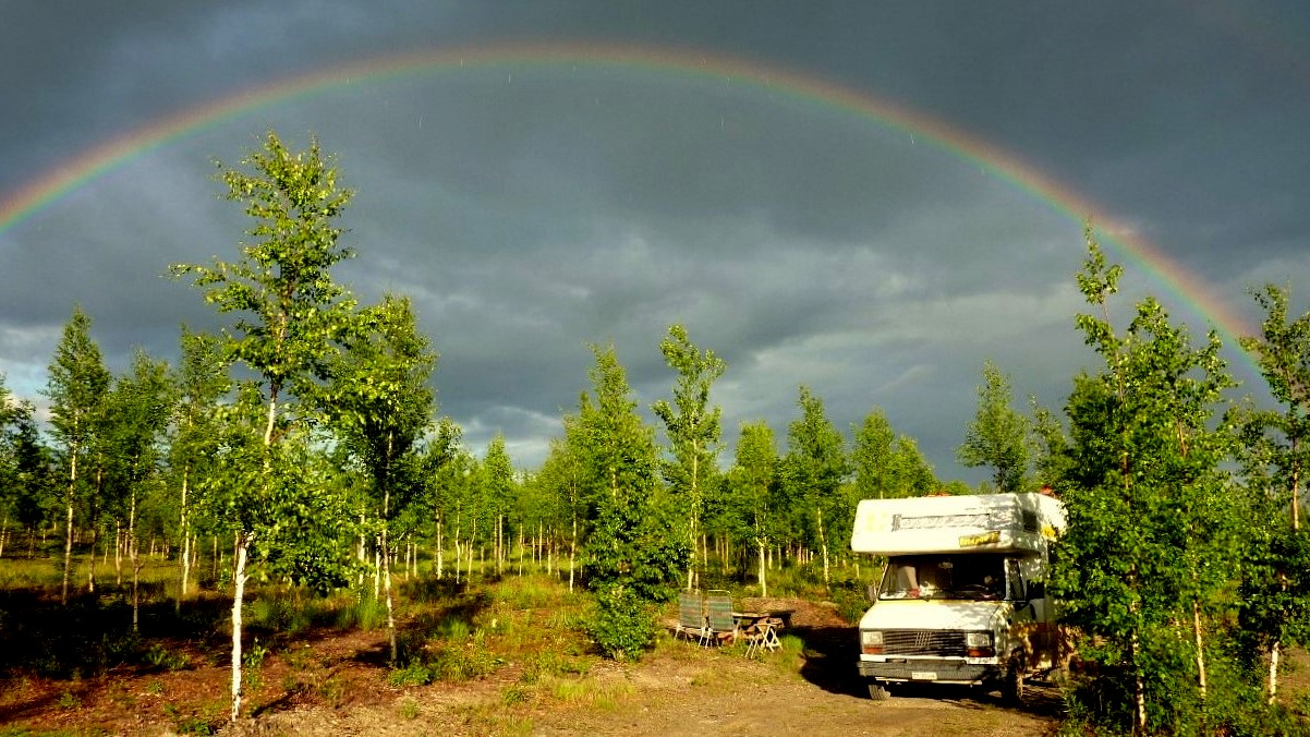 Arct. C. Regenbogen